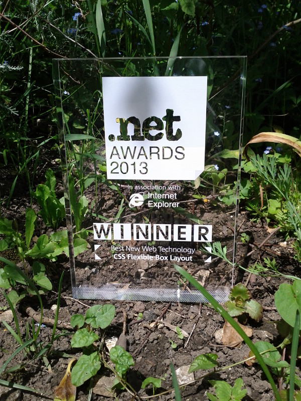 CSS Flexible Box Layout Module gets Best New Web Technology 2013 Net Award!